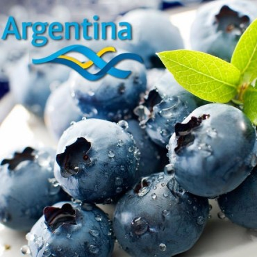 ABC.ARG BLUEBERRY.     News 38 - 23 de Noviembre.